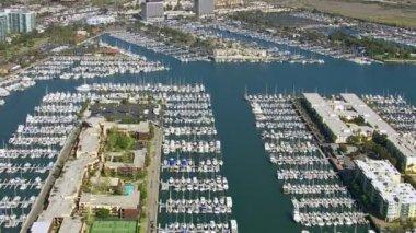 Sail boats docked in harbor — Stock Video