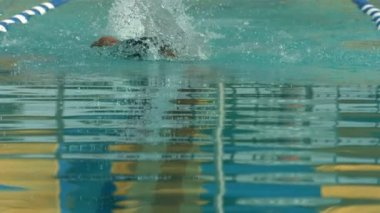 Swimmer doing freestyle stroke — Stock Video