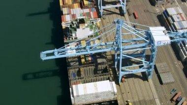 Long Beach shipping docks — Stock Video