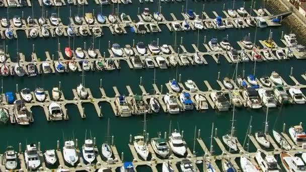 Sail boats docked in harbor — Vidéo