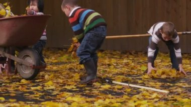 Kids and Mom pick up leaves — Stock Video
