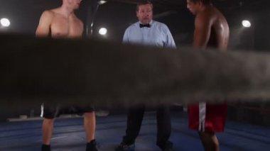 Referee starts boxing match — Vidéo