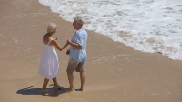 Couple stand on sandy beach — Vidéo