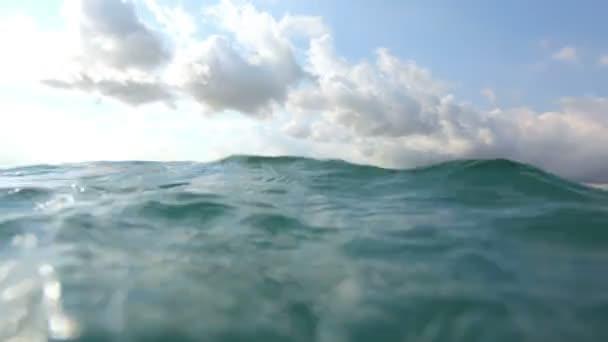 Surfer paddles in ocean — Vídeo de stock