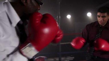 Boxer takes a break — Stock Video