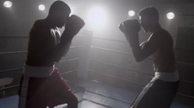 Boxers standing in ring ready to fight — Stock Video