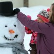 Family making snowman — Stock Video #65591751