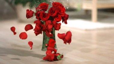 Vase of roses breaking backwards — Stock Video