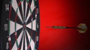 Darts hitting dartboard — Stock Video