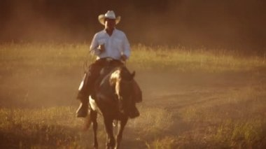 Portrait of cowboy on horse — Stock Video