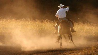 Cowboy roping at sunset — Stock Video