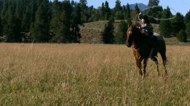 Cowboy riding horse — Stock Video