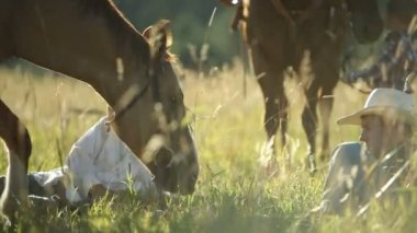 Cowboys sit in grass — Stockvideo
