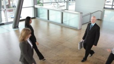 Group of businesspeople assemble — Stock Video