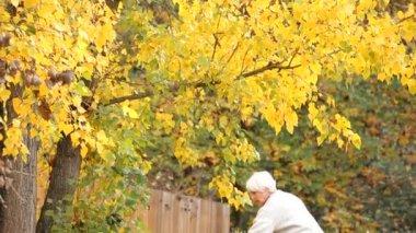 Woman raking fall leaves — Stock Video