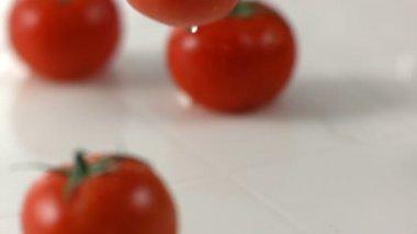 Tomato splashing onto wet surface — Stock Video