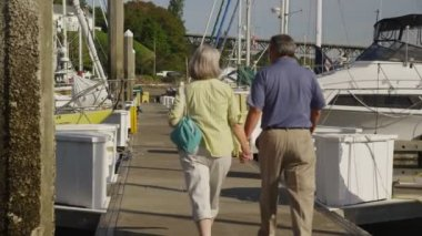 Senior couple walking on dock at marina. — Stock video