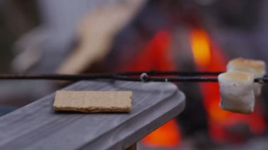 Making smores by outdoor fire. — Stock Video