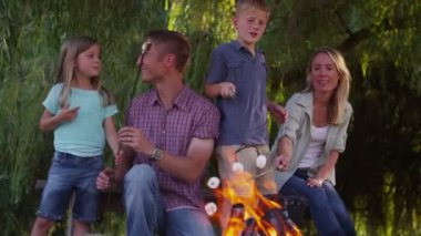 Family toasting marshmallows on camp fire — Stock Video