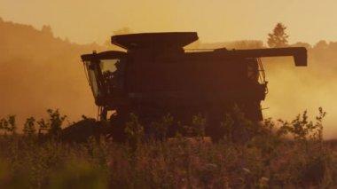 Tractor harvesting at sunset — Vídeo de Stock