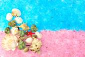 The composition of sea shells on the pink and blue salt — Stock Photo