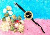 Sea shells and compass — Stock Photo