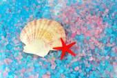 Shell and star on sea salt — Stock Photo