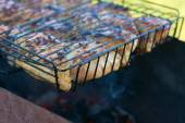 Skewers of chicken on the grill — Stock Photo