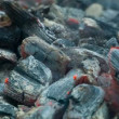 The dying coals in the brazier smoke and burn — Stock Video #64054077