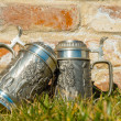 Two beer mugs on the grass near the brick wall — Stock Photo #67992511