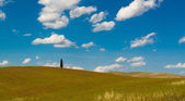 The hills of Montalcino, a wine town, Siena — Stock Photo