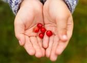 Children's hands with berries — Stock Photo
