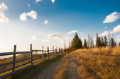 Country road in mountains — Stock Photo