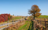 Autumn landscape in mountains — Stock Photo