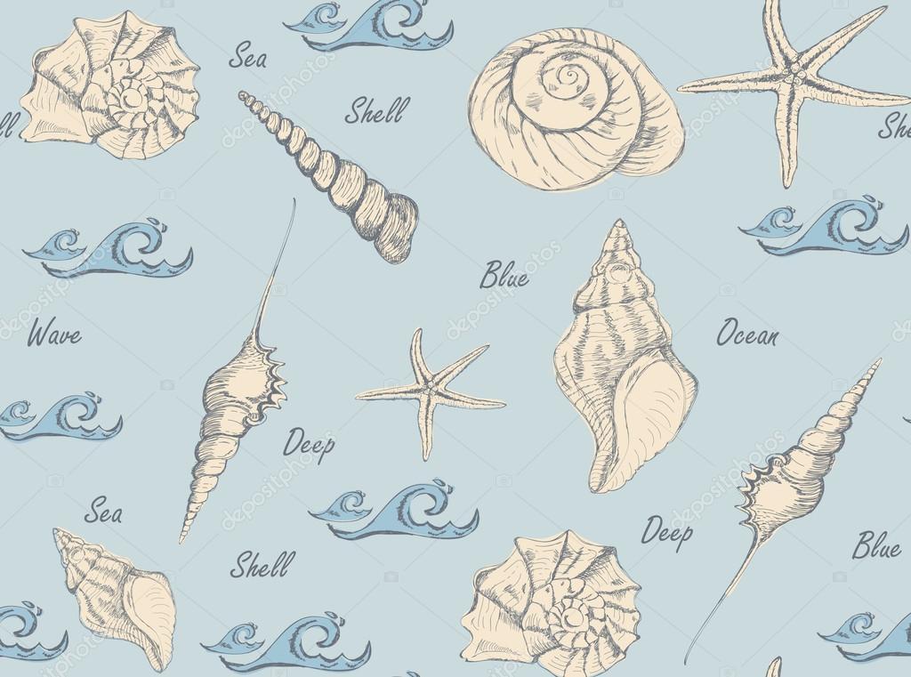 手绘贝壳图案背景.矢量图