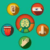 Five senses concept with human organs icons and brain in cogwheels vector illustration — Stock Vector