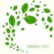 Background with green fresh leaves and place for your text. Vector illustration — Stock Vector #64791171