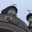 Domes and crosses on church Russia — Stock Video #69843651