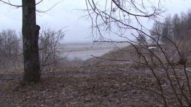 Scenic views of the Oka river in Konstantinovo Russia — Stock Video