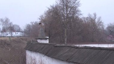 Bare branches of a tree and the watchtower of the fortress — Stock Video
