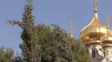 Garden of Gethsemane. Church of St. Mary Magdalene. — Stock Video