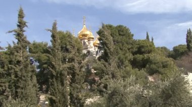 Garden of Gethsemane. Church of St. Mary Magdalene. — Stock Video