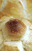 Rosetta italian bread — Stock Photo
