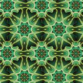 Mandala vector ornament — Stock Vector