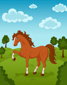 Horse on meadow — Stock Vector
