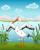 Stork  on the waterside — Stock Vector