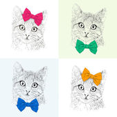 Cats with a bows. Seamless pattern. — Stock Photo