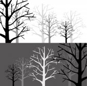 Forest in two Monotone — Stock Vector