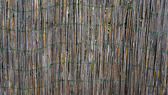 Bamboo wall fence horizontal — Stock Photo