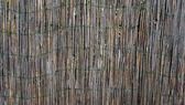 Bamboo wall fence horizontal — Stock Photo